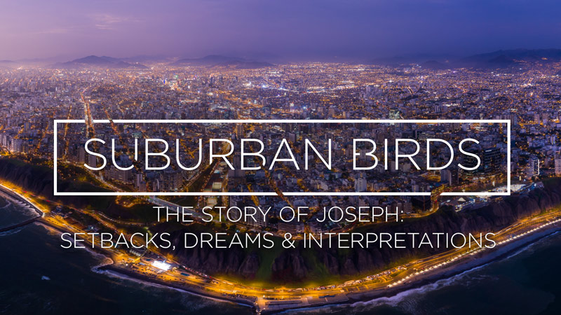 Suburban Birds 5: The Story of Joseph - Setbacks, Dreams and Interpretations