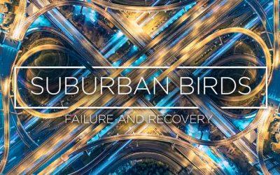 Sububurban Birds 8: Failure & Recovery