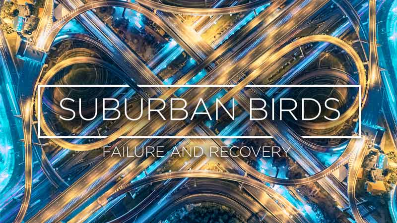 Suburban Birds 8: Failure and Recovery