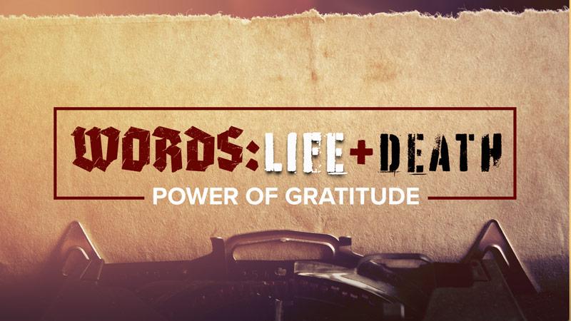 WORDS: Life & Death – Power of Gratitude
