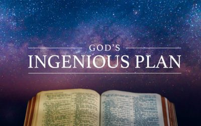 God's Ingenious Plan