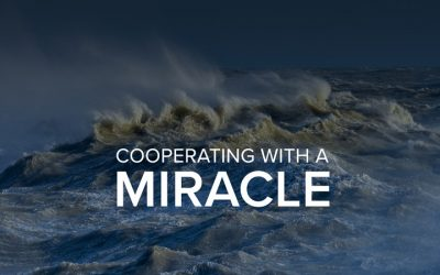 Cooperating with a Miracle